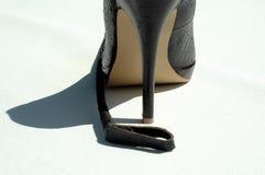 stylet noir d'équitation de leathe de collecte illustration stock