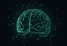 Stylised 3D Brain Royalty Free Stock Image