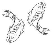 Stylised fish illustration Royalty Free Stock Image