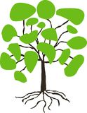 Stylised hand drawn tree with green crown on white Stock Image