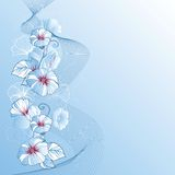 Stylish abstract floral background. Design of Stock Images
