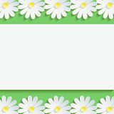 Stylish background with chamomiles and paper sheet. Stylish floral background, 3d flowers chamomiles. Abstract trendy spring or summer background with sheet of Stock Photos