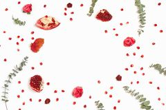 Stylish background with pomegranate and eucalyptus branches royalty free stock photo