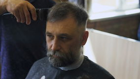 Stylish Barber works with the haircut. Client aged with gray hair and beard. stock video