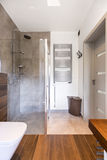 Stylish bathroom and modern shower Royalty Free Stock Image