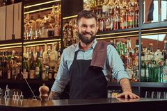 Stylish bearded bartender in a shirt and apron standing at bar counter background. Stylish bearded barman in a shirt and apron standing at bar counter Royalty Free Stock Photos