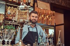 Stylish bearded bartender in a shirt and apron standing at bar counter background. Stylish bearded barman in a shirt and apron standing at bar counter Royalty Free Stock Image