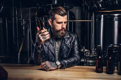 Stylish bearded biker dressed black leather jacket sitting at bar counter in indie brewery. Stylish bearded biker dressed black leather jacket holds bottle with royalty free stock photography