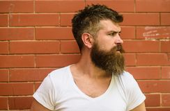 Stylish bearded hipster. Beard grooming has never been so easy. Beard care tricks will keep your facial hair looking stock photos