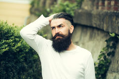 Stylish bearded man outdoor Royalty Free Stock Image