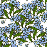 Stylish beautiful floral seamless pattern. Abstract Elegance vector illustration texture with forget-me-not. Royalty Free Stock Photos