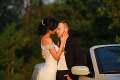 Stylish beautiful happy bride and groom, wedding celebrations Royalty Free Stock Photography