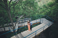 Stylish beautiful happy wedding couple kissing and embracing in Botanical Garden.  Stock Photo