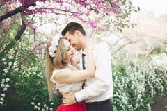 Stylish beautiful happy wedding couple kissing and embracing in Botanical Garden.  Royalty Free Stock Image