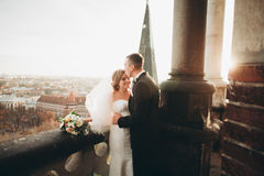 Stylish beautiful wedding couple kissing and hugging on background panoramic view of the old town Stock Photography