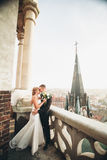 Stylish beautiful wedding couple kissing and hugging on background panoramic view of the old town Stock Images
