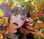 Stylish beauty outdoor portrait of sensual young woman. Stylish beauty portrait of sensual female with fashionable makeup encircled autumn leaves Stock Photos