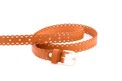 Stylish belt Stock Photography