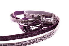 Stylish belts Stock Image