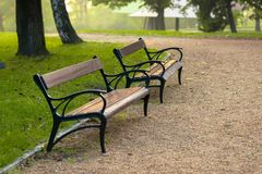 Stylish bench in autumn park Stock Image