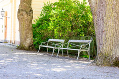 Stylish bench in the summer park Stock Image