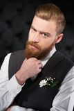Stylish and bizzare man with beard Stock Photo