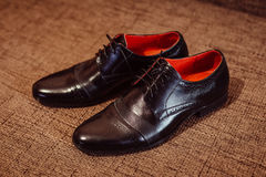 Stylish black leather shoes stand on the brown carpet Royalty Free Stock Photography
