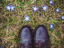 Stylish, black shoes and bright, blue flowers stock photography