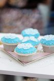 Stylish blue and white cupcakes Royalty Free Stock Photo