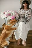 Stylish boho girl playing and smiling with cute golden dog at metal bucket with peonies on rustic wooden chair in home. Beautiful royalty free stock image
