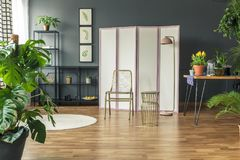Stylish botanic room interior. With wooden floor and grey walls stock image