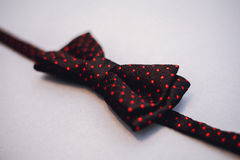 Stylish bowtie soft cloth ribbon. Classic groom accessories. Set of men`s stylish vintage. Male decoration for couple. Jewelry for man. Groom`s morning royalty free stock photography