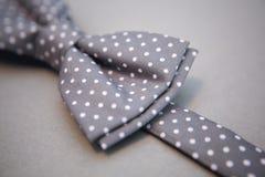 Stylish bowtie soft cloth ribbon. Royalty Free Stock Photos