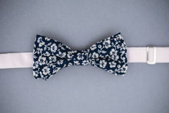 Stylish bowtie soft cloth ribbon. Classic groom accessories. Set of men`s stylish vintage. Male decoration for couple. Jewelry for man. Groom`s morning stock images