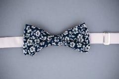 Stylish bowtie soft cloth ribbon. Stock Images