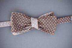 Stylish bowtie soft cloth ribbon. Stock Photos