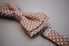 Stylish bowtie soft cloth ribbon. Royalty Free Stock Photo