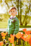 Stylish boy in the flowers Royalty Free Stock Images