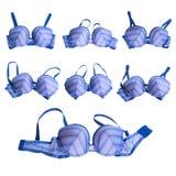 Stylish bra Stock Image