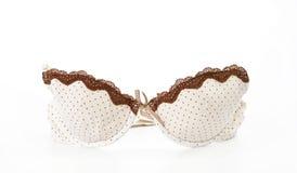 Stylish bra on white background Royalty Free Stock Photos
