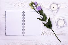Stylish branding mockup to display your artworks.Blank notebook, flower, candles on a white background from above royalty free stock photos