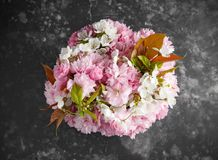 Stylish bridal bouqet of tender white and pink sakura flowers.  royalty free stock photography