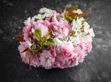 Stylish bridal bouqet of tender white and pink sakura flowers stock images