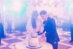 Stylish bride and groom in the restaurant cutting cake Stock Images
