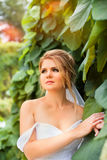 Stylish bride in a white dress on the wedding day Stock Photos