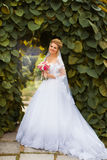 Stylish bride in a white dress on the wedding day Stock Image