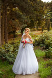 Stylish bride in a white dress on the wedding day Royalty Free Stock Photography