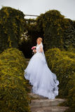 Stylish bride in a white dress on the wedding day Royalty Free Stock Images
