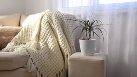 Stylish brightly interior of living room. Inviting comfortable sofa with handmade woolen blanket. Comfortable place for reading or relaxing in Scandinavian stock video footage