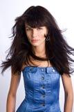 Stylish brunette Stock Image